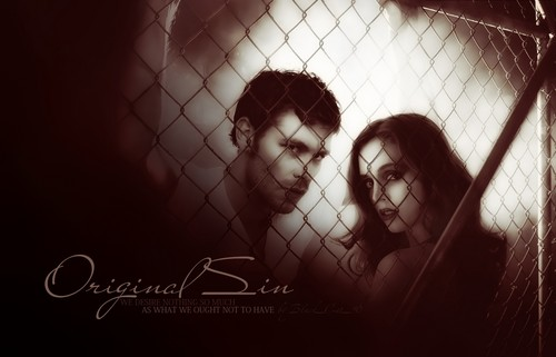 the vampire diaries wallpaper entitled the vampire diaries