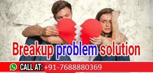 91-7688880369 how to get your l'amour ex back solution molvi ji