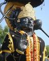 91-9878482157 Black Magic Specialist Baba Ji - all-problem-solution-astrologer photo