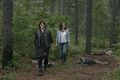 9x03 ~ Warning Signs ~ Daryl and Maggie - the-walking-dead photo