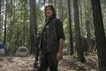 9x03 ~ Warning Signs ~ Daryl - the-walking-dead photo