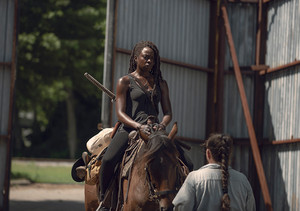 9x06 ~ Who Are anda Now? ~ Michonne