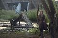 9x07 ~ Stradivarius ~ Carol - the-walking-dead photo
