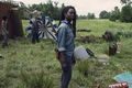 9x07 ~ Stradivarius ~ Michonne - the-walking-dead photo
