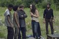 9x07 ~ Stradivarius ~ Yumiko, Kelly, Connie, Luke and Siddiq - the-walking-dead photo