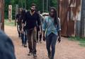 9x08 ~ Evolution ~ Siddiq and Michonne - the-walking-dead photo