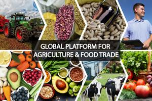 Agriculture comida