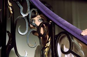 Annex Hepburn Audrey