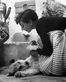 Audrey Hepburn And Her Dog