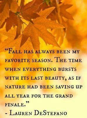 Autumn 🧡