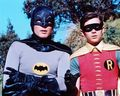 Batman and Robin - whatsupbugs photo