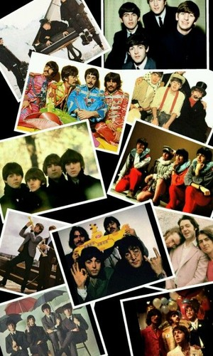 Beatle collage