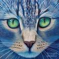 Beautiful Kitty - ktchenor fan art