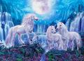 Beautiful Unicorns - unicorns photo