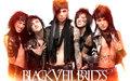 Black Veil Brides - black-veil-brides wallpaper