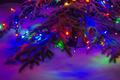 Christmas Lights 🎄 - christmas photo