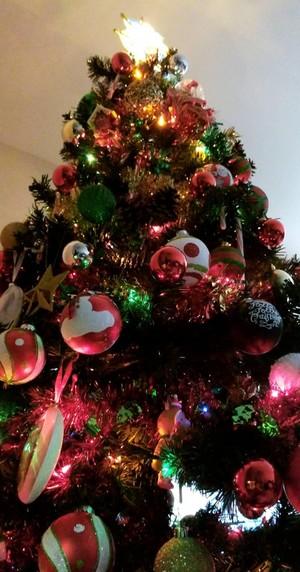 圣诞节 decorations