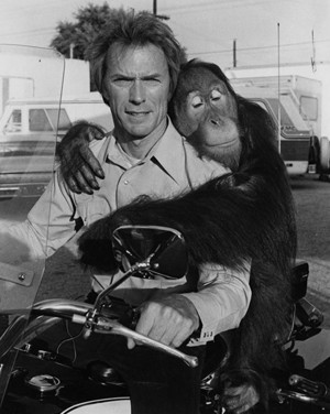 Clint and Manis the Orangutan aka Clyde