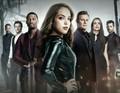 Dynastie Season 2 Cast