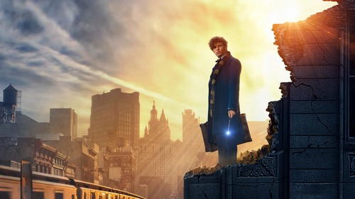 Fantastic Beasts and Where to Find Them wallpaper titled Fantastic Beasts And Where To Find Them