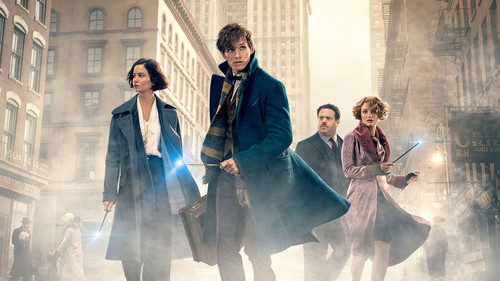 Fantastic Beasts and Where to Find Them wallpaper entitled Fantastic Beasts And Where To Find Them