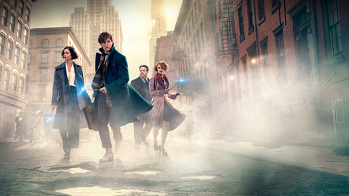 Fantastic Beasts and Where to Find Them wallpaper called Fantastic Beasts And Where To Find Them