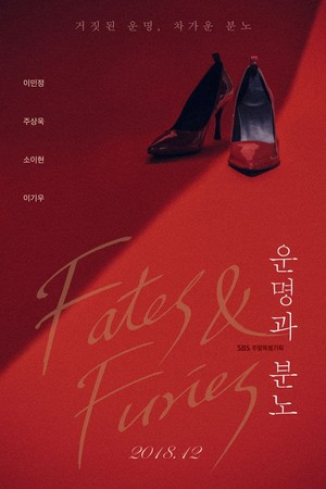 Fates Furies Poster