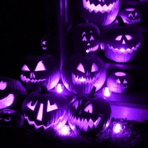 Lavendergolden fond d'écran entitled Happy Halloween my sweet Violet🍂🎃