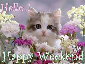 Happy weekend for my sweet Heather🌸