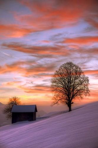 Lavendergolden Hintergrund entitled Have a beautiful weekend dear Violet💐 🌸🌈💖