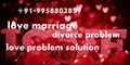 Love Breakup Solution Baba ji 91 9958802839 Bangalore - all-problem-solution-astrologer photo