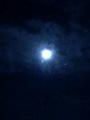 Luna & Mars - random photo