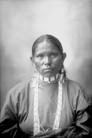 Mary Richards (Lipan Apache) in Native Dress with Ornaments (Frank A Rinehart 1898)