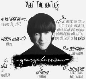 Meet The Beatles: George 😍
