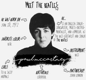 Meet The Beatles:Paul 💐