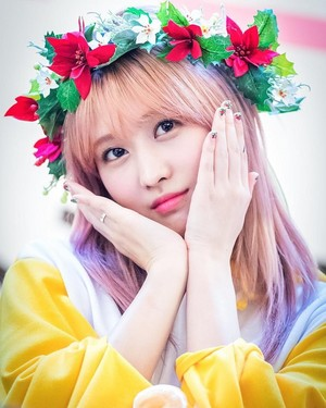 Momo The flor Goddess