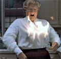 Mrs. Doubtfire Robin Williams Stunt Double - robin-williams photo
