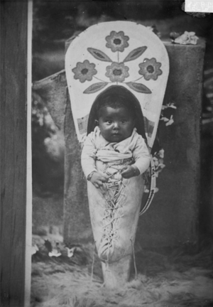 Nez Perce Baby Boy in Cradleboard (1902)
