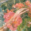 Pastel - daydreaming photo