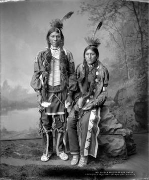 Porrum (Parrum) and Pedro (Buck) Ute - Rose and Hopkins - 1899