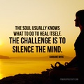 Quote Pertaining To Quiet Meditation