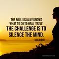 Quote Pertaining To Quiet Meditation