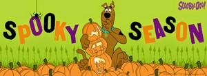 Scooby Doo Spooky Season 🎃