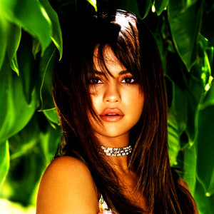 Selena 粉丝 Art