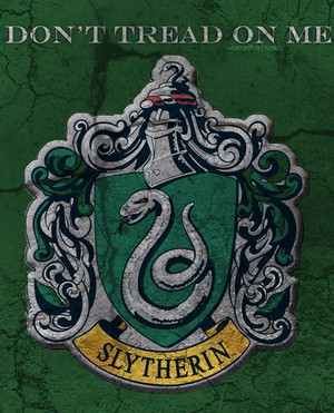 Slytherin harry potter 26498212 500 619