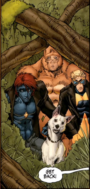 Starman, Congorilla, Animal Man, and Rex The Wonder Dog