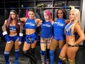Team Smackdown - wwe-divas photo