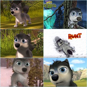 The Best of Runt