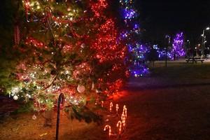 The Oneida árbol lighting 2018 (Oneida Indian Reservation ~Oneida, Wisconsin) 🎄