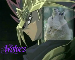 Yami Yugi loups